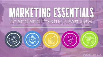 03. Brand and Product Overview