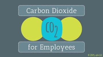 Carbon Dioxide for Employees